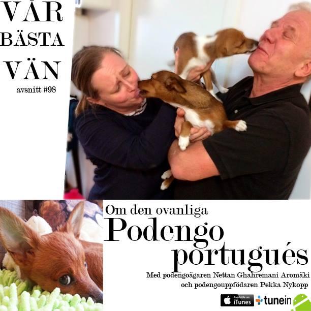 Lucy är med i Sveriges podcast för hundar – Hundpodcasten vår bästa vän.