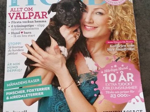 Härliga Hund – Hundporträttet med Podengo
