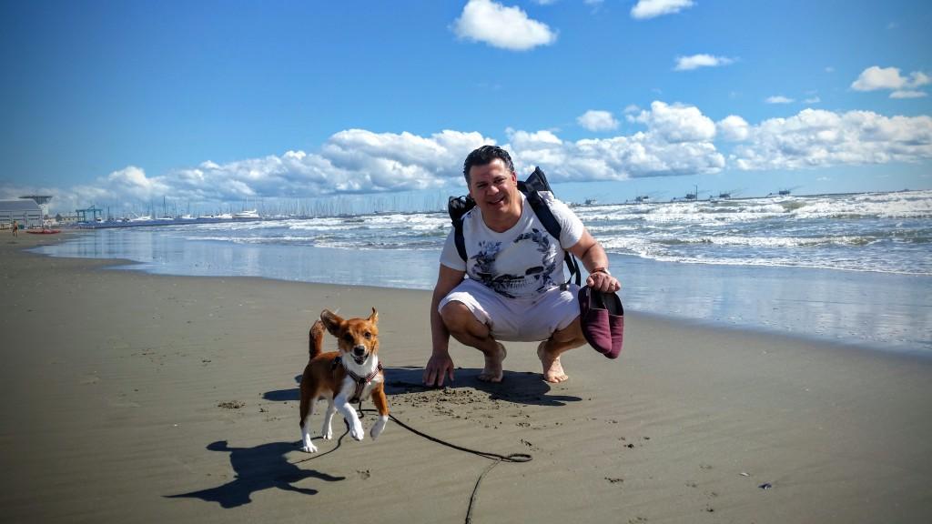 hundvänliga_stränder_podengo