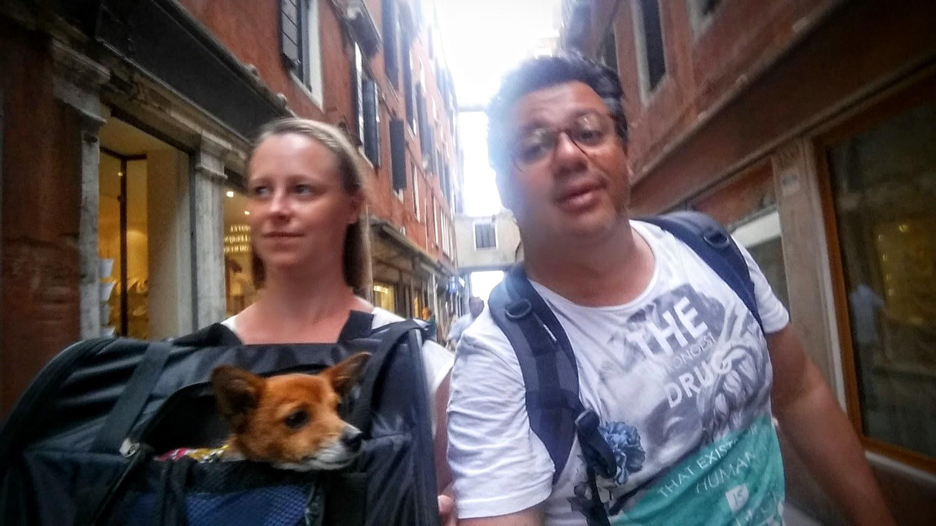 Blivande föräldrar med hund