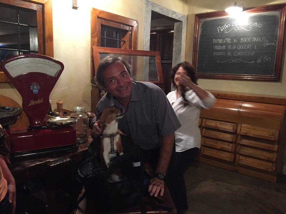 Hund på restaurang